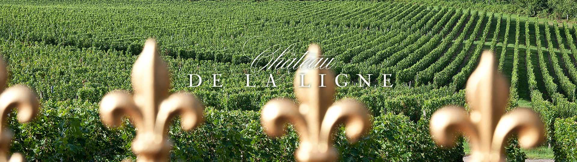 New Web Design Client: Château de La Ligne Bordeaux main image